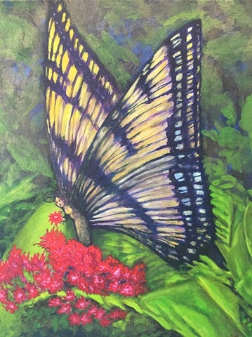 """Madame Butterfly"" by Lisa Wright"