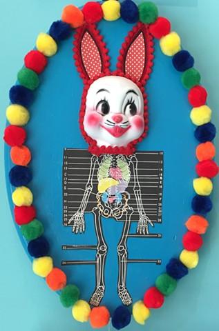 'Bunny' by Melissa Stewart